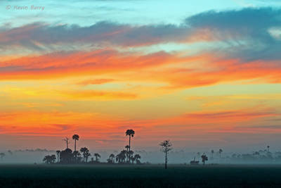 Big Cypress National Preserve at dawn, Florida