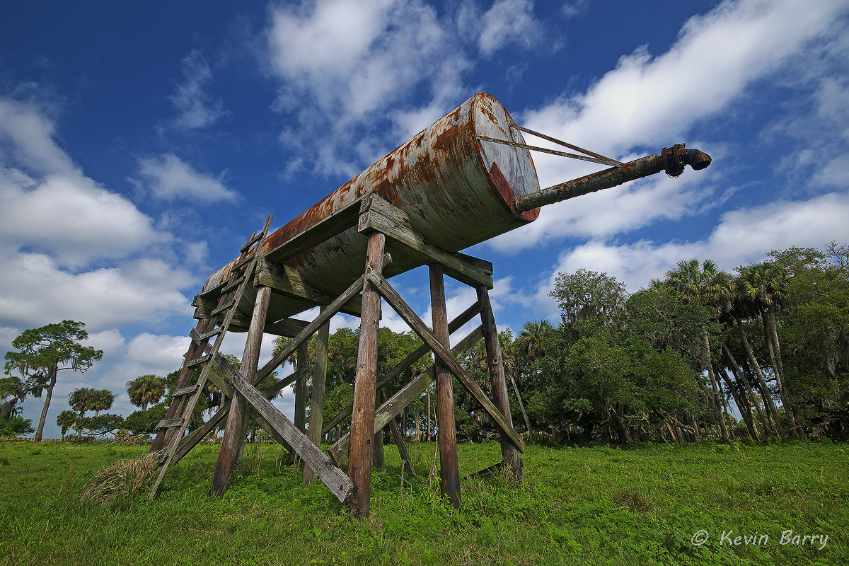 Water Tank, Dinner Island Ranch Wildlife Management Area, Florida, man-made, horizontal, cows, cattle, cloudy, green grass, south...