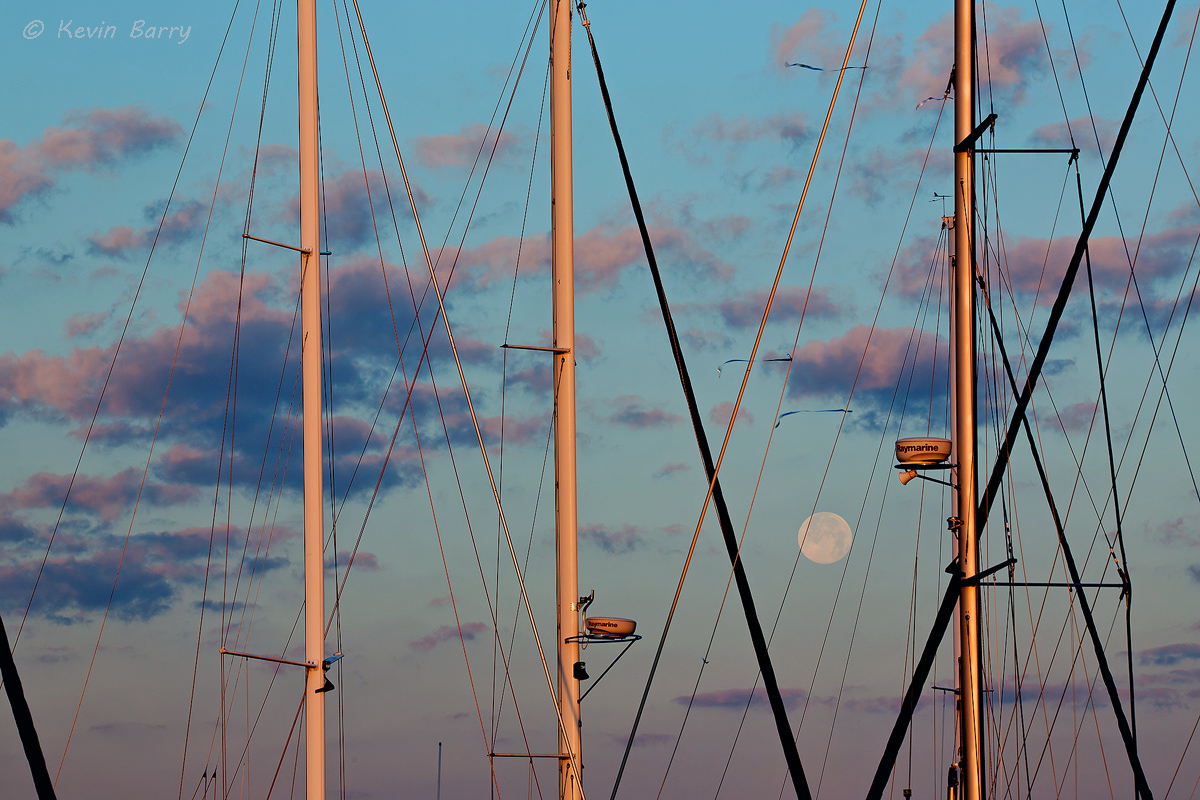 Moonset and sailboats, Brunswick, Georgia, photo