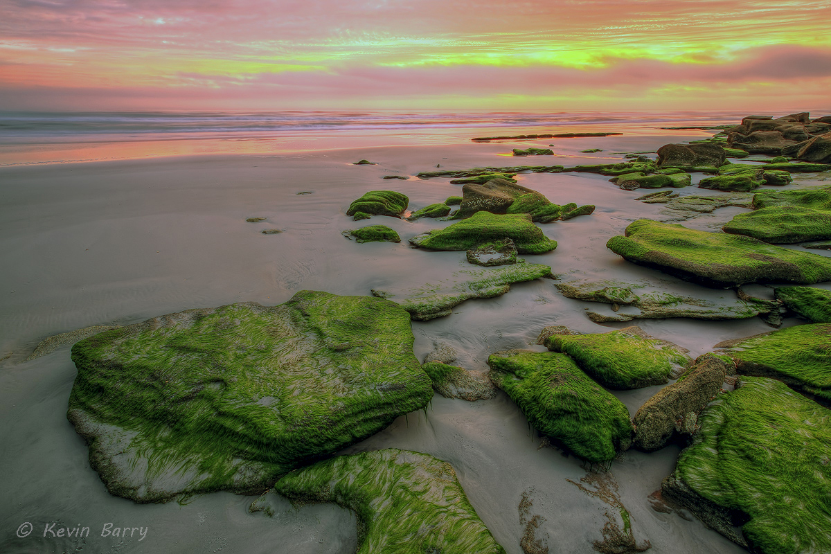 Coquina rock outcroppings at sunrise, Wahington Oaks Garden State Park, Flagler County, Florida, photo